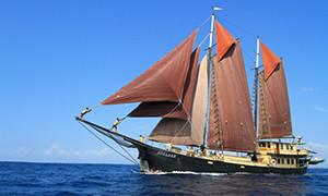 Indonesien-Bali Safariboote - Schiffe
