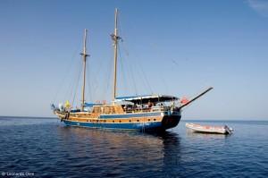 Safarischiffe San Marco