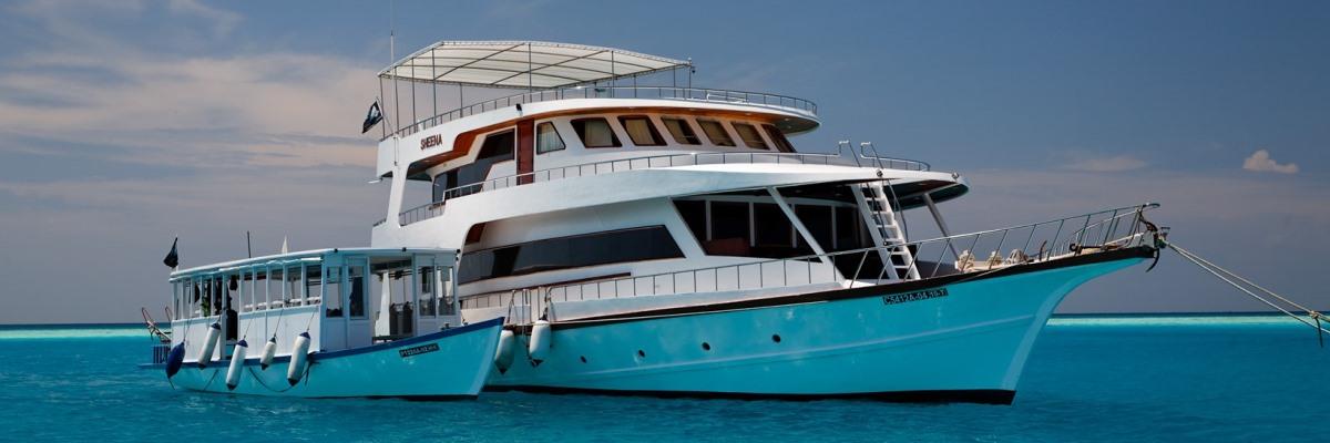 Malediven Sheena 50% Rabatt
