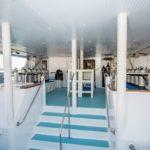 Tauchbereich Tauchschiff Royal Evolution