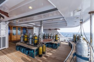 Tauchdeck Safarischiff Golden Dolphin 2