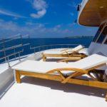 Brücke Tauchschiff Eco Blue Shark One