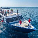 Dhoni-Spaß Tauchschiff Maldives Aggressor II